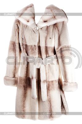 Women`s coat of fur | High resolution stock photo |ID 3310779