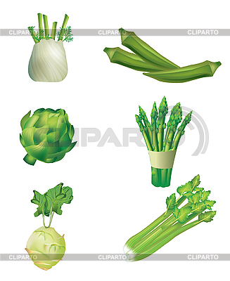 Set of green vegetables | Stock Vector Graphics |ID 3050902