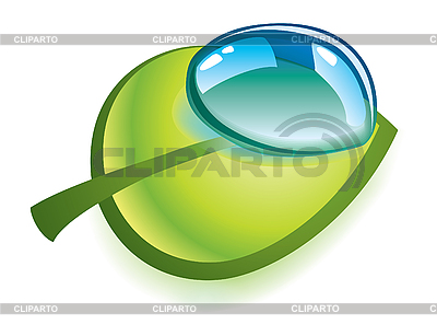 Clean drop on green leaf   Stock Vector Graphics  ID 3067631