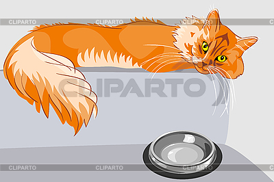 Red fluffy tabby cat with yellow eyes | Stock Vector Graphics |ID 3070660