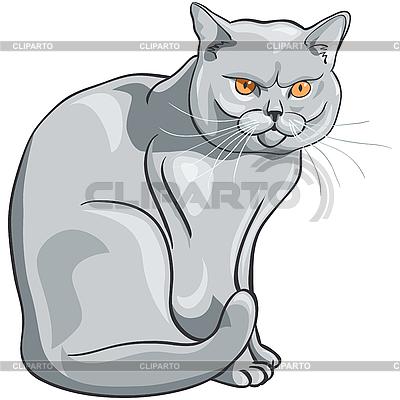 Graue Katze sitzt und schaut ernst | Stock Vektorgrafik |ID 3077271