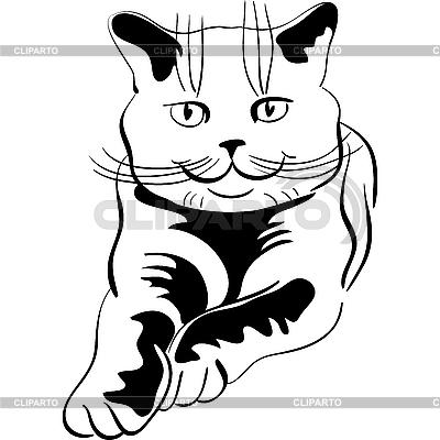 Раскраска британские кот