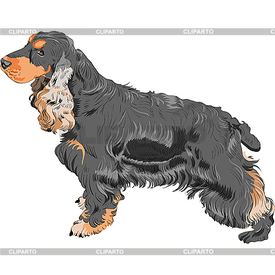 Dog black Cocker Spaniel | Stock Vector Graphics |ID 3110478