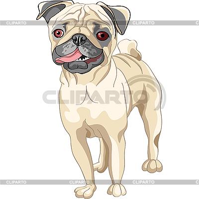 Палевые собаки породы мопс | Векторный клипарт |ID 3126447