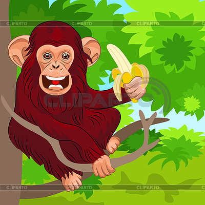 Happy monkey chimp in jungle with banana | Stock Vector Graphics |ID 3322085