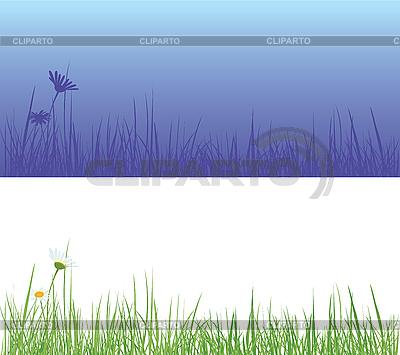 Feld-Gras | Stock Vektorgrafik |ID 3052609