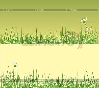 Pole trawy | Klipart wektorowy |ID 3052667
