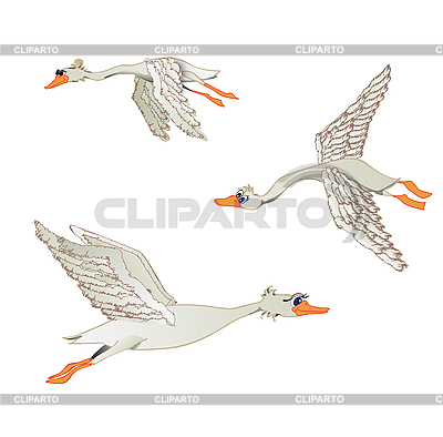 Fliegende Gänse | Illustration mit hoher Auflösung |ID 3054922