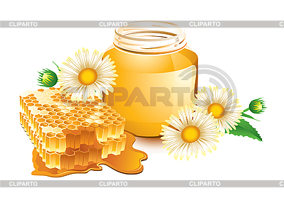 Camomiles honey | Stock Vector Graphics |ID 3052158