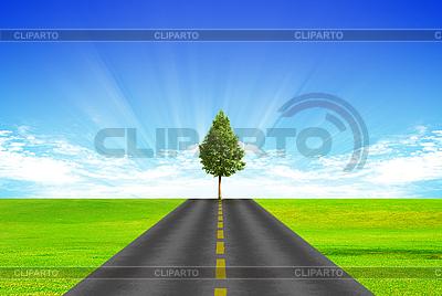 Straße und Baum | Foto mit hoher Auflösung |ID 3053413