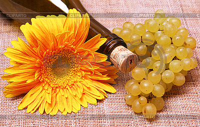 Wine bottle with flower and grapes branch | High resolution stock photo |ID 3107565