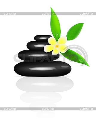 Spa stones and frangipani | 向量插图 |ID 3138741