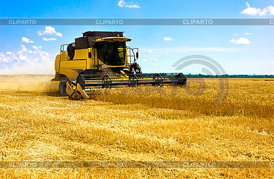 Комбайн в поле | Фото большого размера |ID 3154517