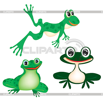 Green frogs on white | Stock Vector Graphics |ID 3056551