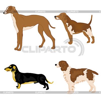Cztery psy | Klipart wektorowy |ID 3062094