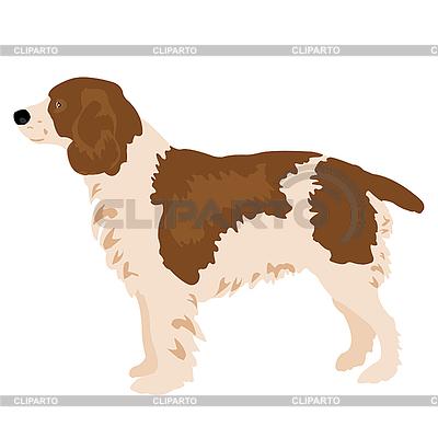 Dog  | Stock Vector Graphics |ID 3062098