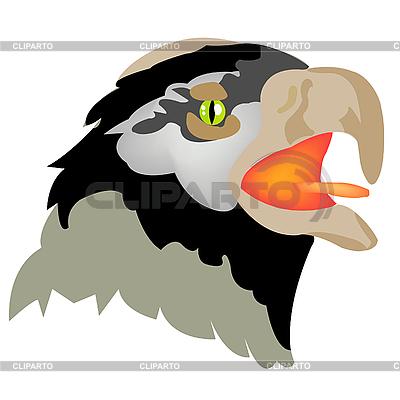 Głowa orła | Klipart wektorowy |ID 3064082