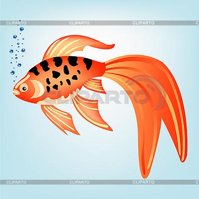 Piękne ryby tropikalne | Klipart wektorowy |ID 3077722