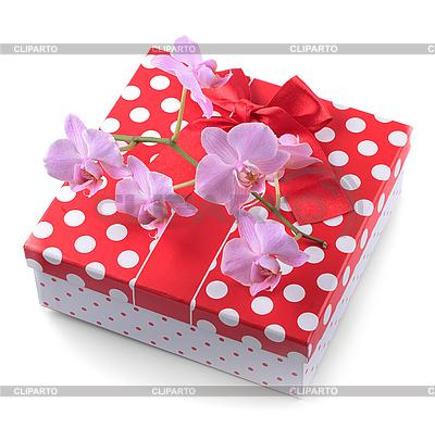 Geschenk und Orchidee  | Foto mit hoher Auflösung |ID 3061256