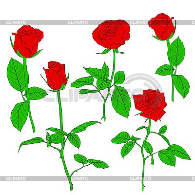 Zestaw czerwonych róż | Klipart wektorowy |ID 3074301