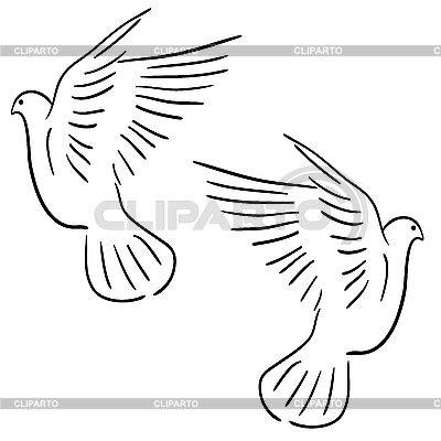 Set of white doves   Stock Vector Graphics  ID 3173626