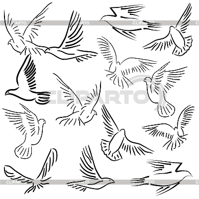 Set of white doves | Stock Vector Graphics |ID 3173703
