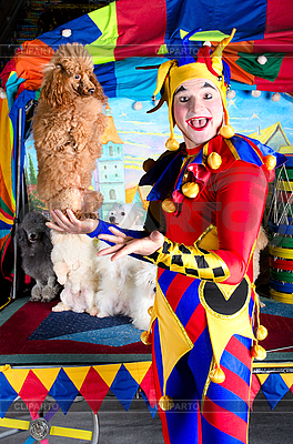Harlequin holding poodle | High resolution stock photo |ID 3078969