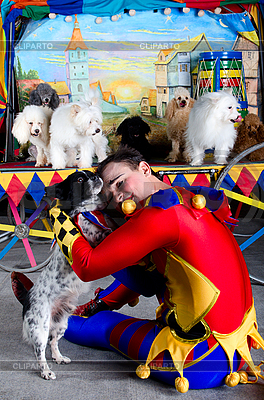 Harlequin embrace small dog | High resolution stock photo |ID 3078979