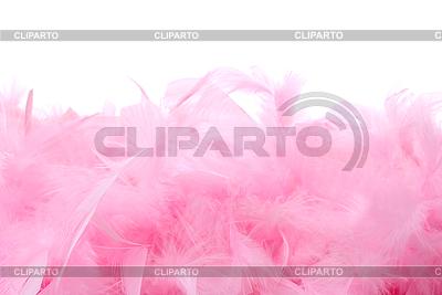 Różowe pióra stos | Foto stockowe wysokiej rozdzielczości |ID 3079264