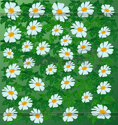 Blumenhintergrund | Stock Vektorgrafik |ID 3081788
