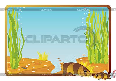 Perch   Stock Vector Graphics  ID 3080937