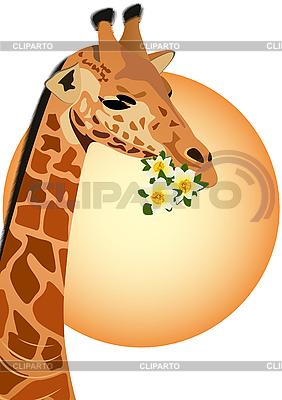 Żyrafa z kwiatami | Klipart wektorowy |ID 3111690