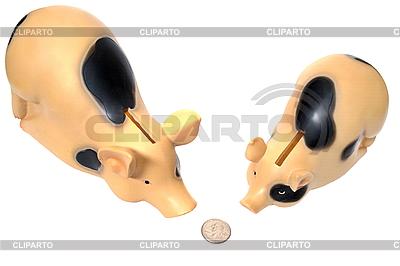 Zwei Schweune haben eine Münze gefunden | Foto mit hoher Auflösung |ID 3105743