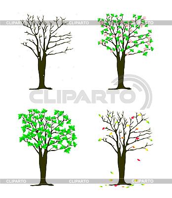 Vier Jahreszeiten - Bäume | Stock Vektorgrafik |ID 3083433