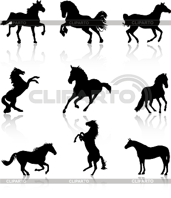 Horses set | Stock Vector Graphics |ID 3083500