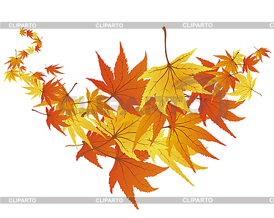 Autumn leaves | Stock Vector Graphics |ID 3087342