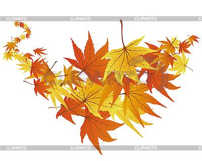 Jesienne liście | Klipart wektorowy |ID 3087342
