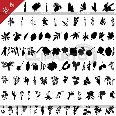Plants set | Stock Vector Graphics |ID 3087968