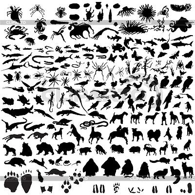 Zestaw sylwetki zwierząt | Klipart wektorowy |ID 3088031