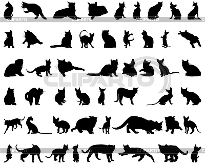 猫剪影 | 向量插图 |ID 3088992
