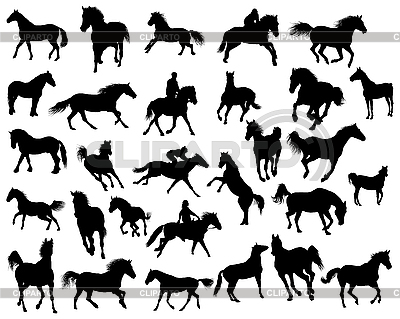 Horses silhouettes | Stock Vector Graphics |ID 3108001