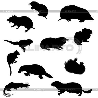 Beavers silhouettes set | Stock Vector Graphics |ID 3177023