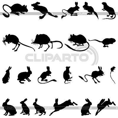 啮齿动物剪影 | 向量插图 |ID 3177704