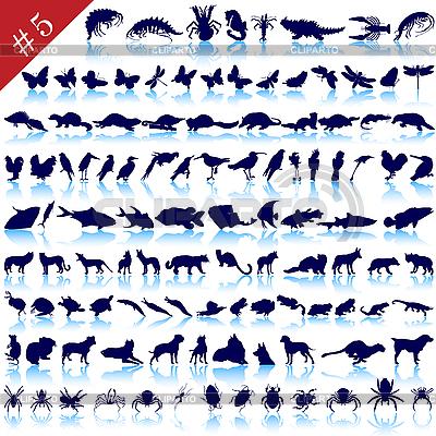 动物剪影 | 向量插图 |ID 3186386