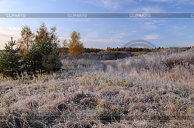 Frosty Morning in the Countryside   High resolution stock photo  ID 3106144