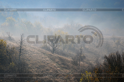 Foggy Hill Slope in the Late Fall   High resolution stock photo  ID 3151663