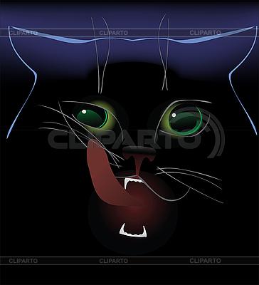 黑猫 | 高分辨率插图 |ID 3088751