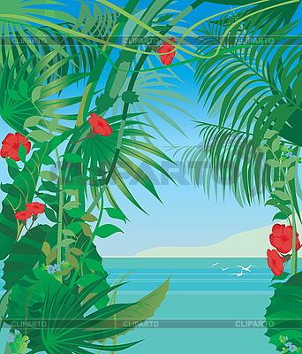 热带海 | 向量插图 |ID 3098540