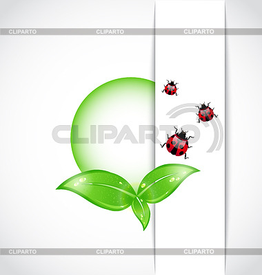 Ecological background with bubbles, leaves, ladybugs | Stock Vector Graphics |ID 3243987