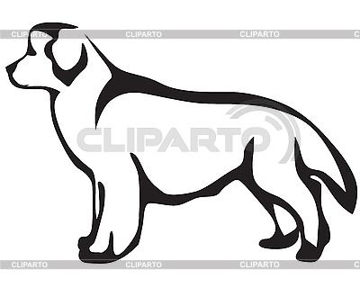 Pies Nowa Fundlandia | Klipart wektorowy |ID 3090812